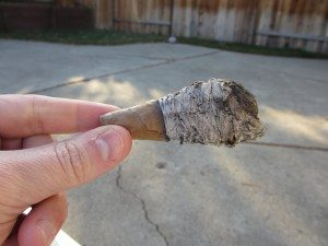 Quick Cigar Review: Drew Estate | Natural Egg