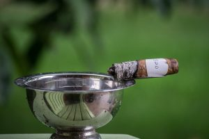 Blind Cigar Review: Hoyo de Monterrey   Anejados Hermosos No.4
