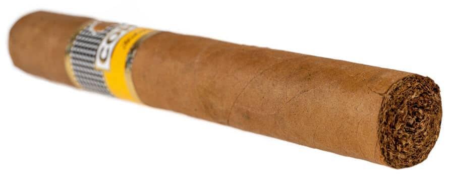 Blind Cigar Review: Cohiba | Siglo II