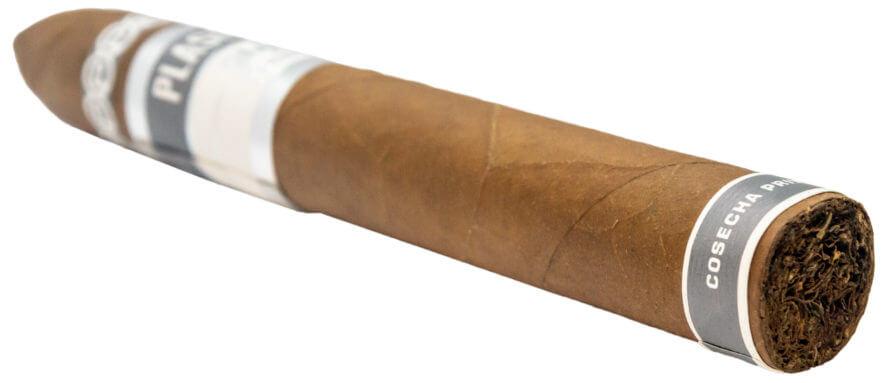 Blind Cigar Review: Plasencia | Cosecha 146 San Agustin