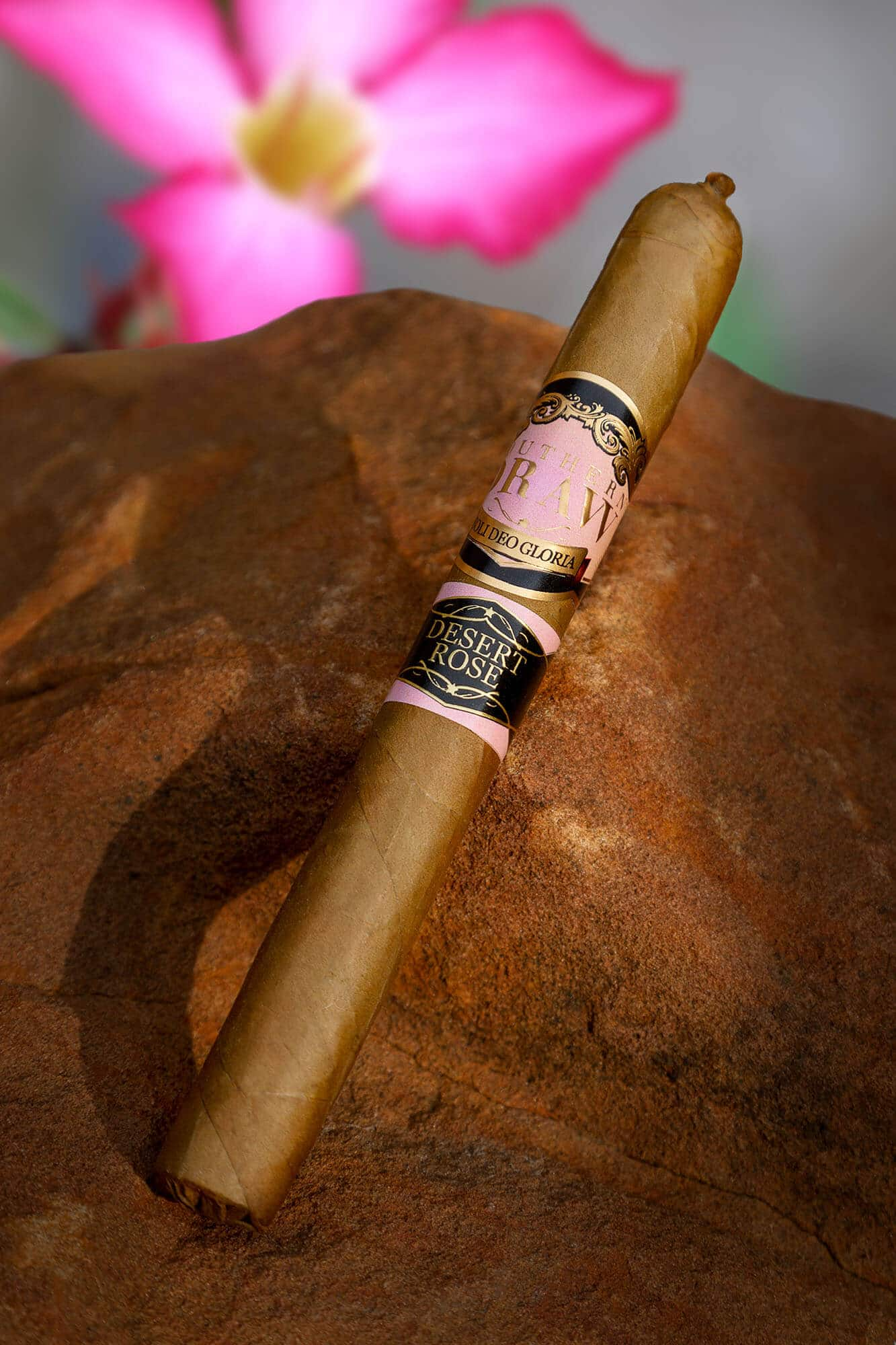 Cigar News: Two New Southern Draw Desert Roses are Blooming this Year