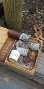 Blind Cigar Review: J.C. Newman | Cuesta-Rey Centro Fino Sungrown No. 60