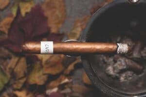 Blind Cigar Review: Espinosa | Fresh Roll