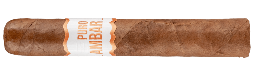 Blind Cigar Review: El Artista | Puro Ambar Robusto