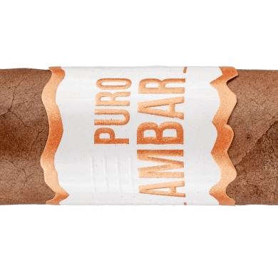 Blind Cigar Review: El Artista | Puro Ambar Robusto