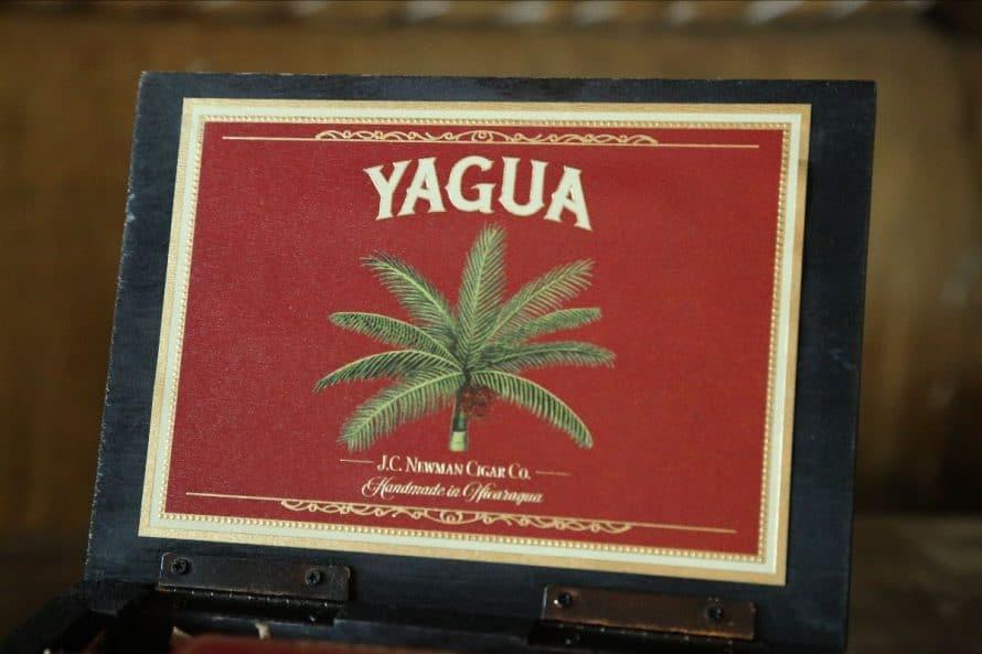 J.C. Newman Brings Back Yagua for 2021